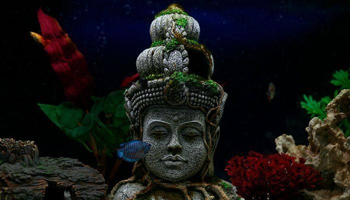 медитация спокойствие антистресс