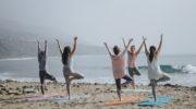 Гид по стилям йоги