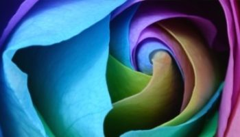 Практикум «PROбуди свою Энергию!» 21 августа (анонс)