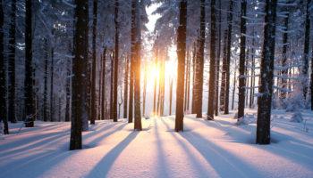 Пополняем запасы тепла и энергии зимой (с видео фрагментами)