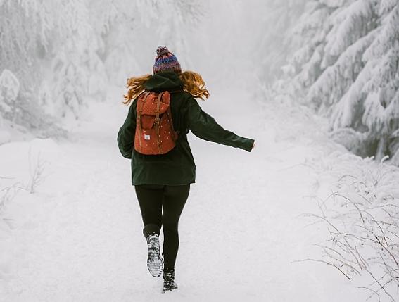 Польза Аюрведы поздней зимой